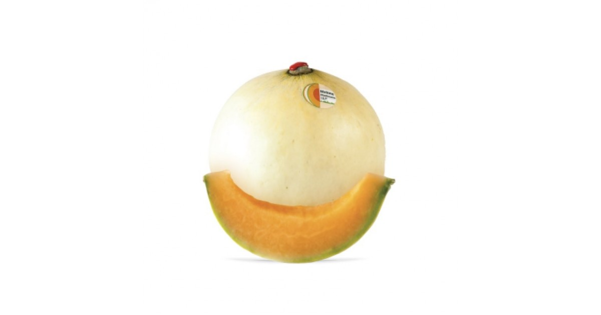 Melone liscio Jolly Acquista Online su fruttaweb.com