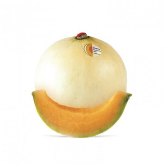 Fresh melon Zerbinati for sale online on FruttaWeb