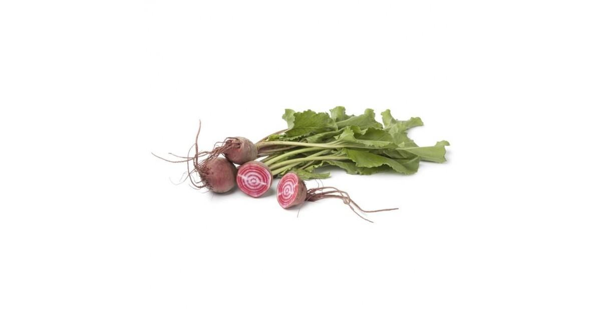 Mini Barbabietola (rapa) Chioggia acquista online su fruttaweb.com