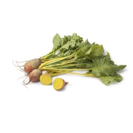 Mini Barbabietola (rapa) gialla: Acquista Online su FruttaWeb.com