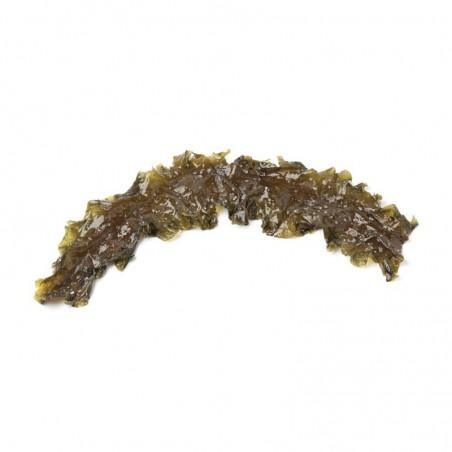 Alga Kombu Royal Acquista Online su fruttaweb.com