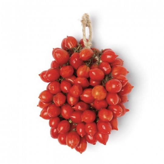Pomodoro pendolo del Vesuvio