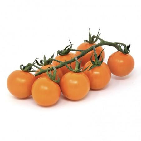 Pomodoro ciliegino arancione Acquista Online su fruttaweb.com