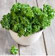 Cavolo riccio Kale: acquista online questo superfrutto su FruttaWeb.com