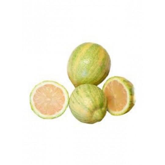 Limone Tigrato (Gourmet Lemon)