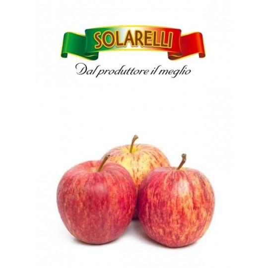 Mele Fuji Solarelli acquista su FruttaWeb.com