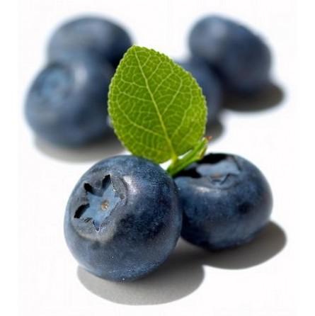 Blueberry fresh - 125 gr