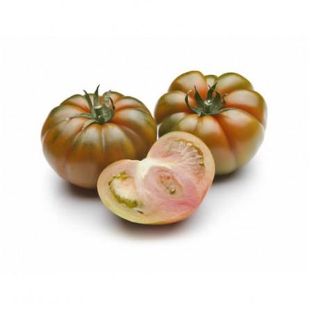 Pomodoro Costoluto Nero