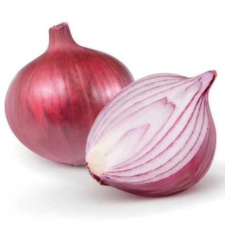 Red Organic Onion Almaverde Bio