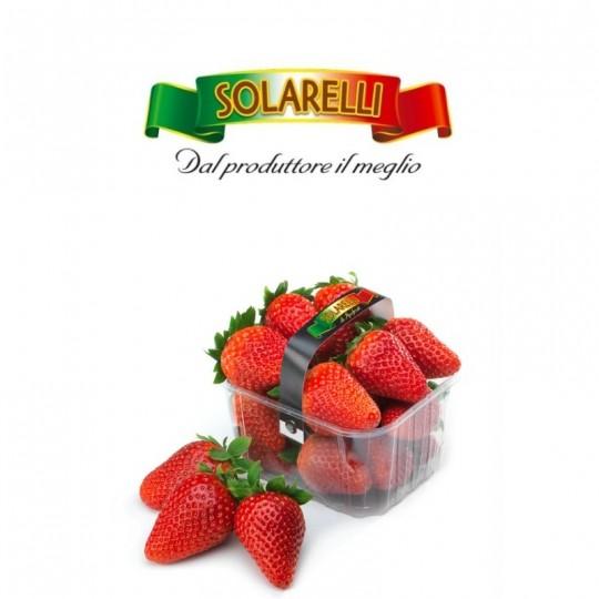 Candonga Italian strawberries - basket of 500 gr