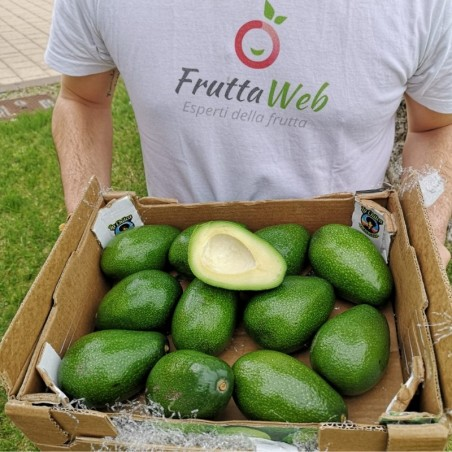 Cassetta di Avocado Ryan. Acquista online