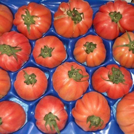 Pomodoro Cuore di Bue: Acquista Online con un Click su FruttaWeb.com