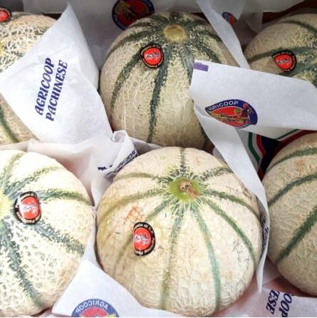 melone retato cantaluo siciliano