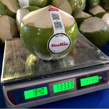 Cocco extra pretagliato da Bere Acquista online su fruttaweb.com
