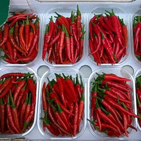 Peperoncino Rawit rosso fresco Acquista online su fruttaweb.com