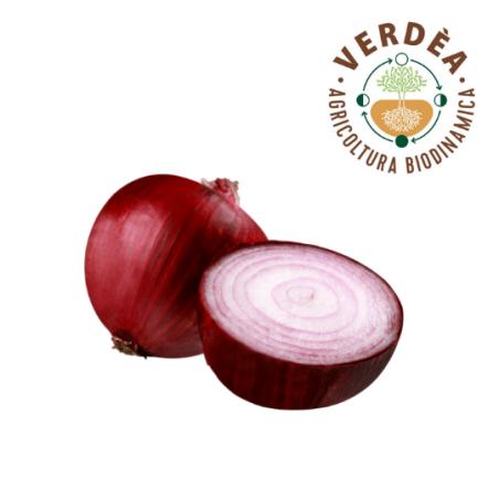 Cipolla rossa da agricoltura biodinamica Verdea