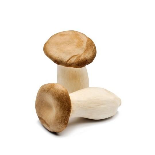 Erengi fresh mushroom (King oyster) - 1 Kg