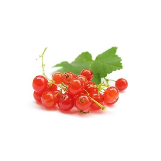 Ribes rossi freschi - 125 gr