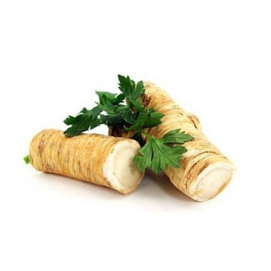 Horseradish - 1 root of about 600/800 grams
