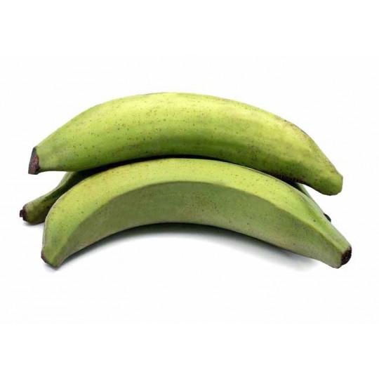 Platano (Banana Verde)