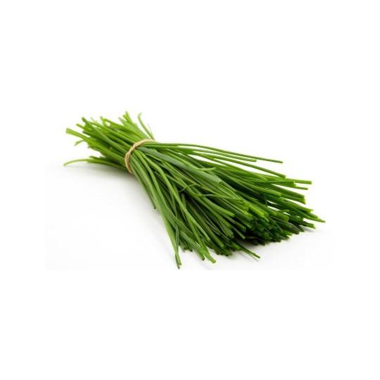 Erba cipollina fresca: Acquista Online con un Click su FruttaWeb.com