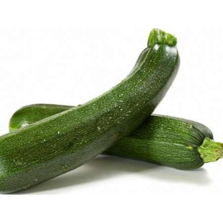 Zucchine verdi scure - 1 kg