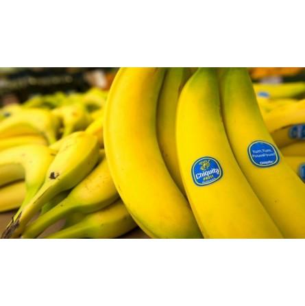 Banane Chiquita: Acquista Online con un Click su FruttaWeb.com