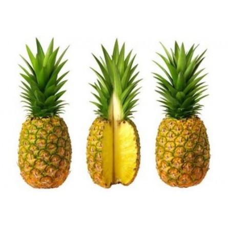 Ananas Orsero Acquista Online su fruttaweb.com