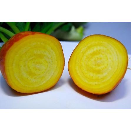 Barbabietola (rapa) gialla: Acquista Online su FruttaWeb.com