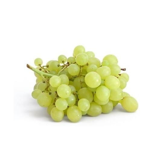 Uva Moscato varietà Italia