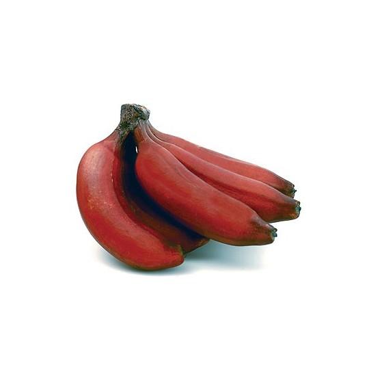 Banane rosse fresche in vendita online su FruttaWeb