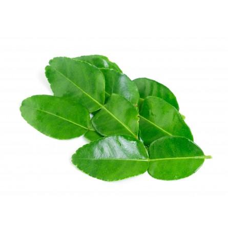 Foglie di Kaffir Lime 25 foglie