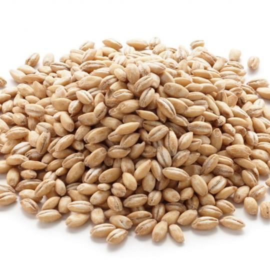 "Organic pearl barley ""Zorzi"" 400 gr"