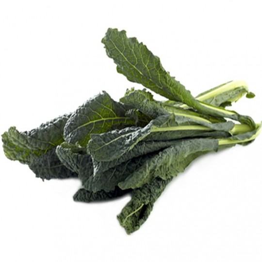 Kale or black cabbage FruttaWeb