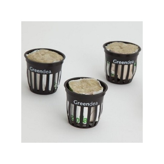 Vase of substrate Greendea for cultivation Hydroponic 10 pcs