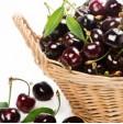 Ciliegie fresche di montagna in vendita online su FruttaWeb