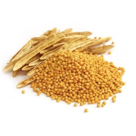 Senape gialla in Grani: acquista ora su FruttaWeb.com