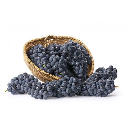 fresh white grape for sale on FruttaWeb.com