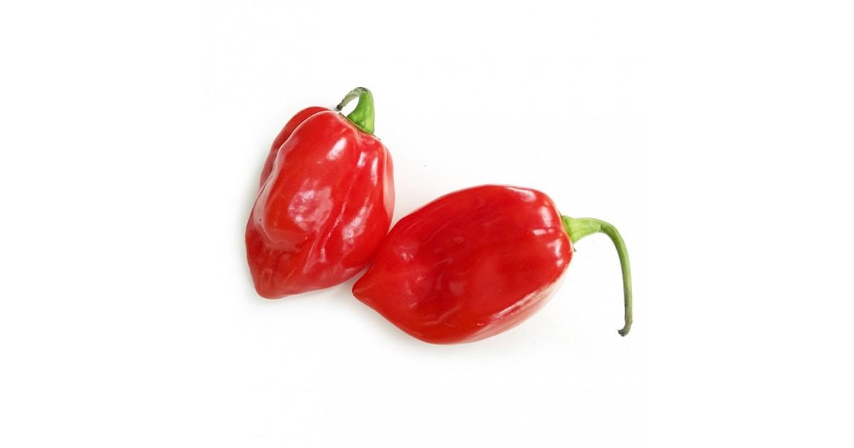 Peperoncino Habanero rosso fresco: acquista online su FruttaWeb.com