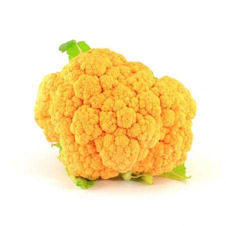 Cavolfiore arancione giallo in vendita online su FruttaWeb.com