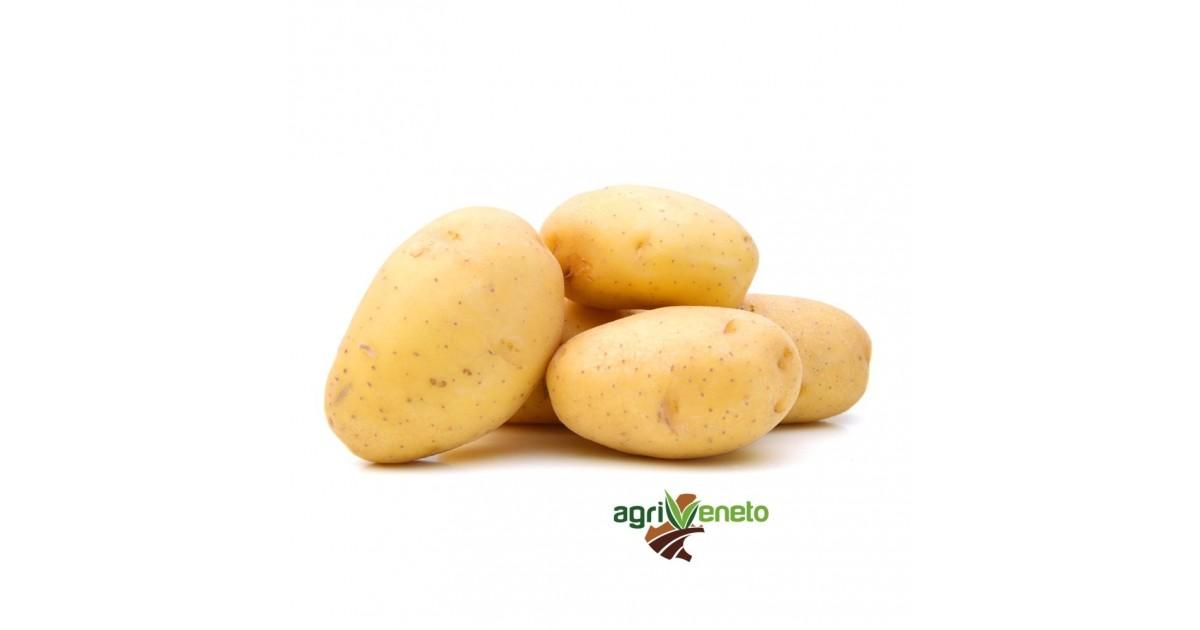 Patate Fresche Colomba per gnocchi e purè di Agriveneto: acquista online su FruttaWeb.com
