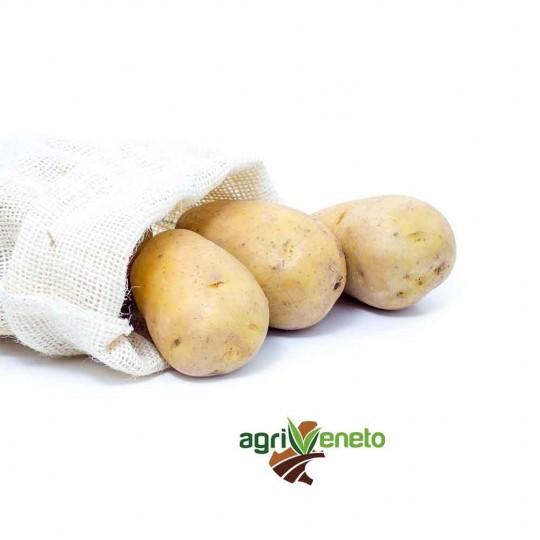 Acquista ora le patate fresce Agata selezionate a mano di Agriveneto su fruttaweb!