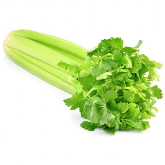 """Sedano verde fresco biologico """"Almaverde Bio"""" 1Kg"""