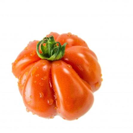 Pomodoro cuore di bue Almaverde Bio - acquista online su FruttaWeb caratteristiche