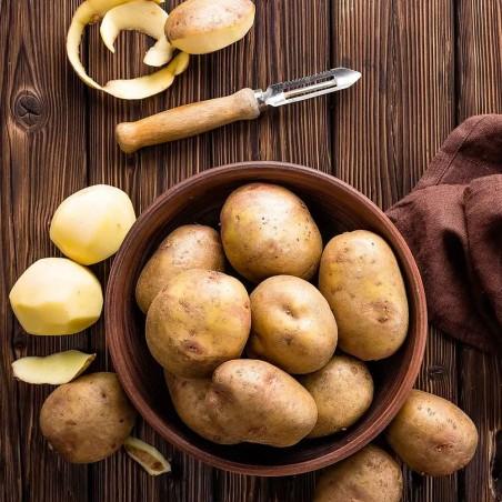 Acquista ora le patate a pasta gialla biologiche Almaverde Bio su fruttaweb!