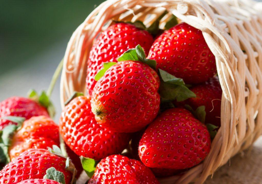 le fragole grazie alle antocianine abbassano il colesterolo cattivo