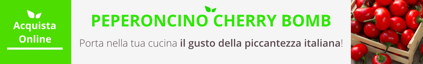 peperoncino cherry bomb acquista online fruttaweb