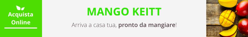 mango-keitt-acquista-online