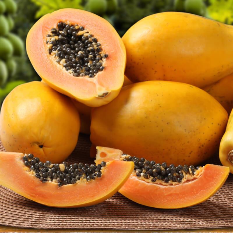 frutta esotica elenco dei frutti tropicali dalla a alla z