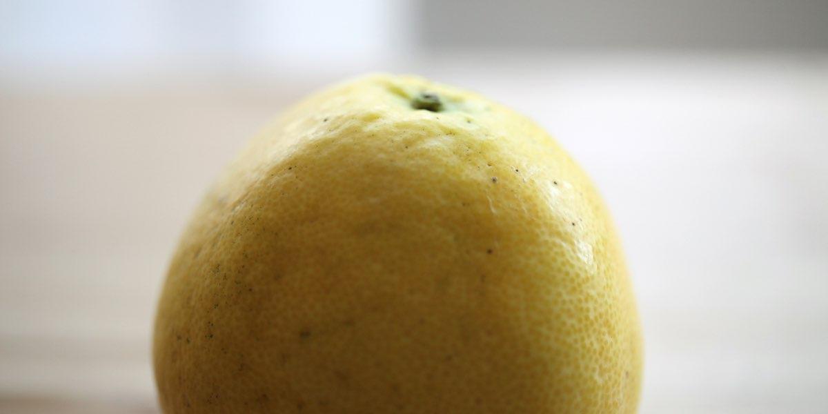 Frutto fresco di bergamotto appena raccolto